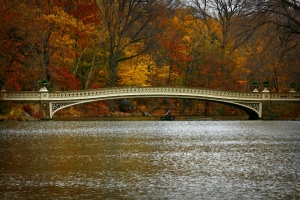 Bow_Bridge_in_Central_Park_on_Thanksgiving_2010