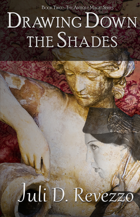 Drawing Down the Shades - Juli D. Revezzo